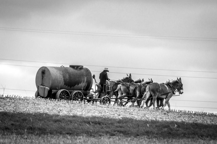 Amish farmer - Pennsylvania