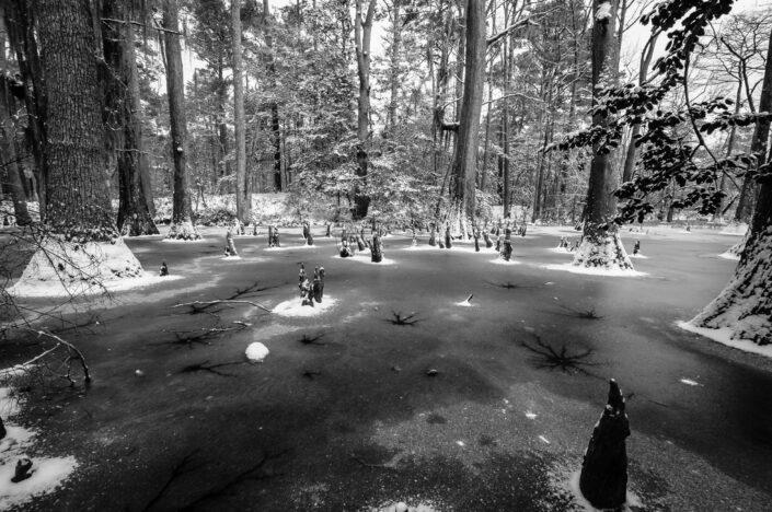 First landing Park - Virginia